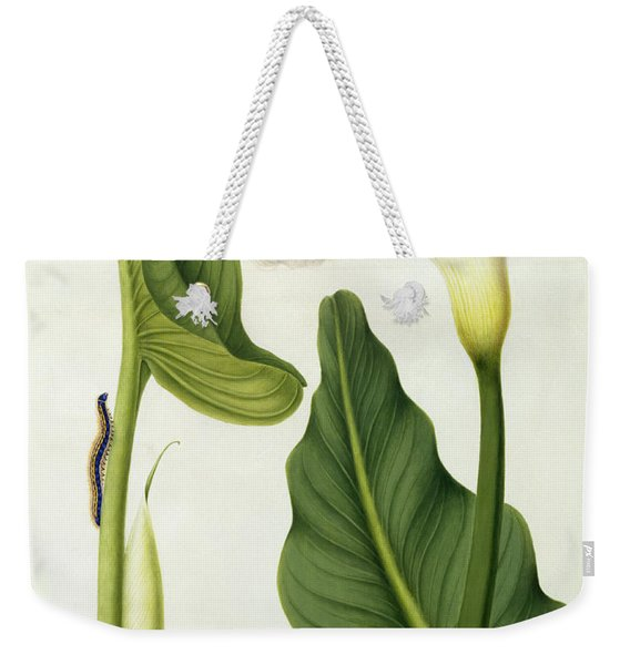 Calla Aethiopica With Butterfly And Caterpillar  Weekender Tote Bag