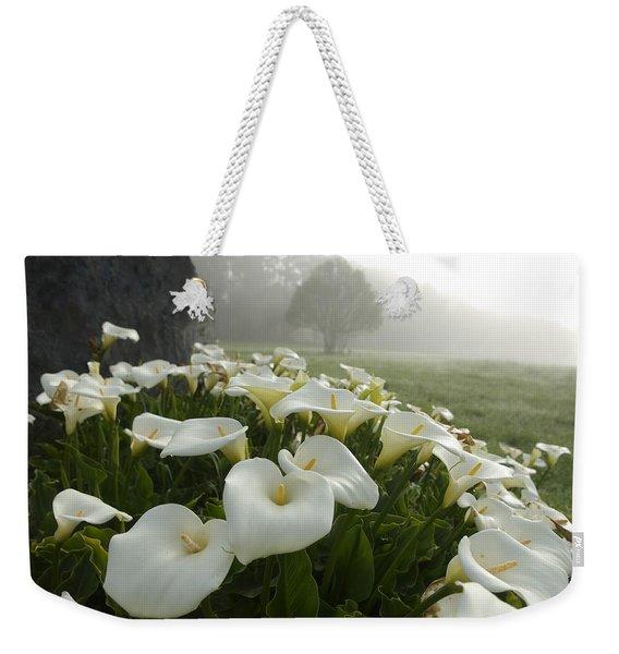 Calla Lilies Zantedeschia Aethiopica Weekender Tote Bag