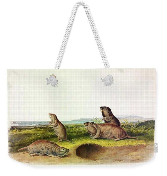 Camas Rat Weekender Tote Bag