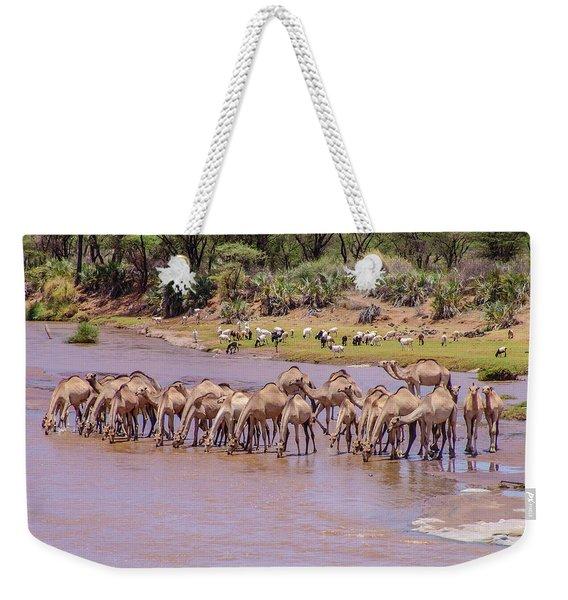 Camels At Ewaso Ng'iro River Weekender Tote Bag