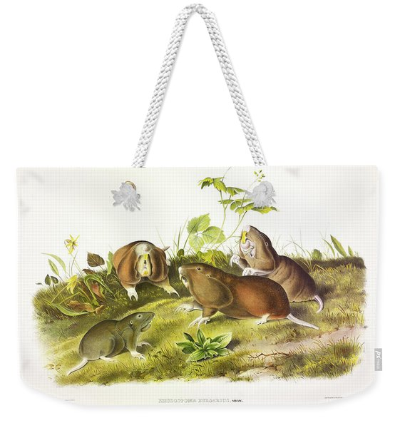 Canada Pouched Rat Weekender Tote Bag