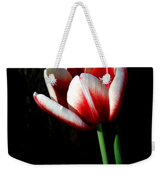 Candy Cane Tulip Weekender Tote Bag