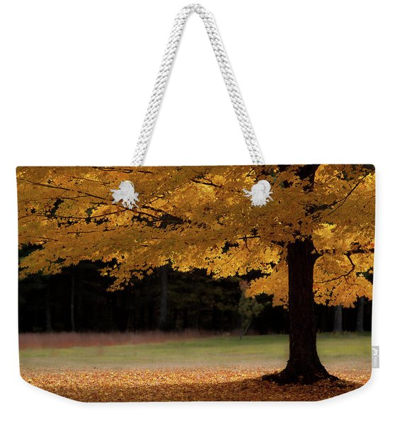 Weekender Tote Bag featuring the photograph Canopy Of Autumn Gold by Jeff Folger