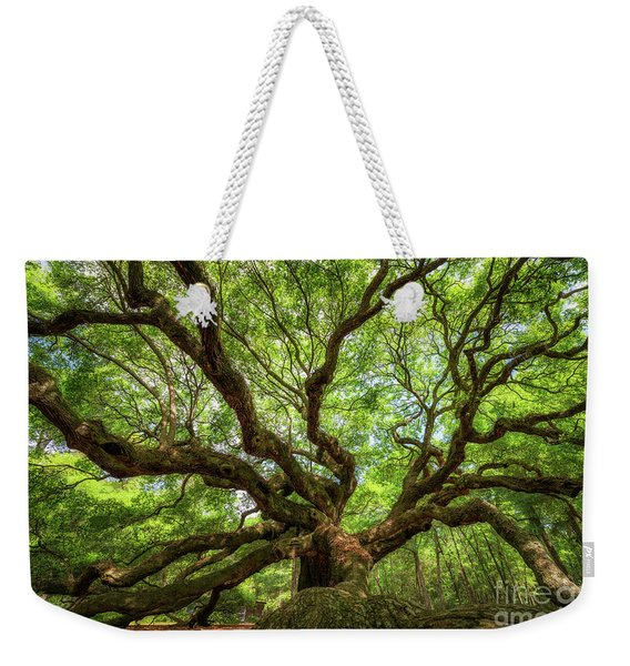 Canopy Of Color At Angel Oak Tree  Weekender Tote Bag