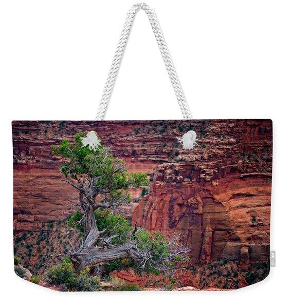Canyonlands Juniper Weekender Tote Bag