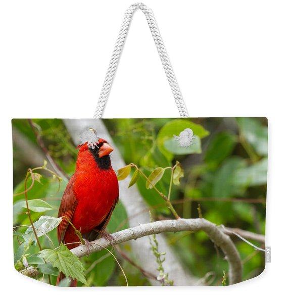 Cardinal 147 Weekender Tote Bag