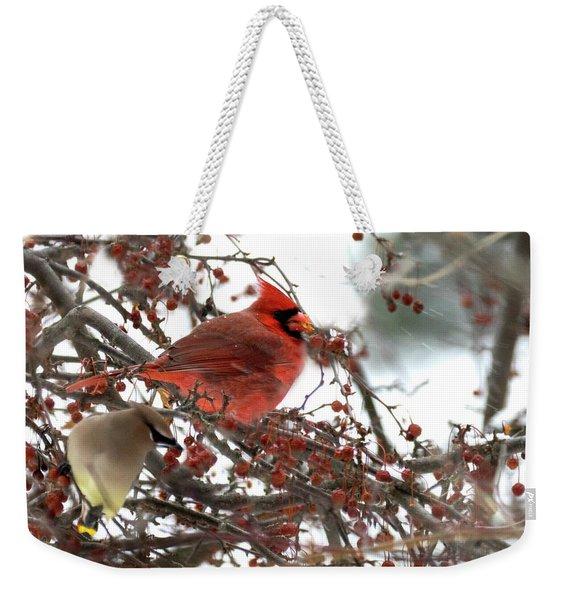Cardinal And Cedar Wax Wing Feeding On Crab Apples Weekender Tote Bag