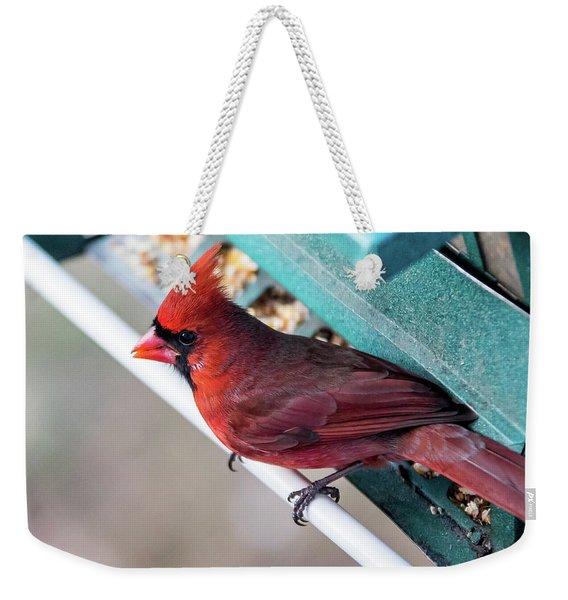 Cardinal Close Up Weekender Tote Bag