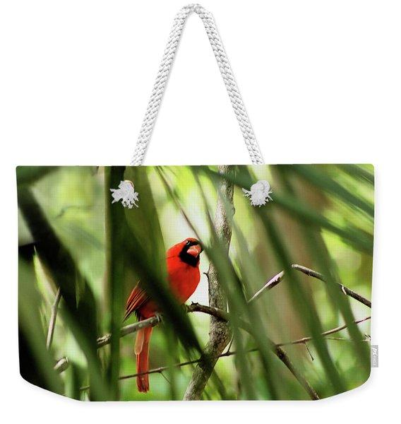 Cardinal Spy Weekender Tote Bag