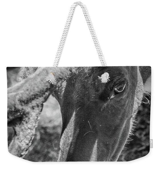 Caribou Black And White Weekender Tote Bag