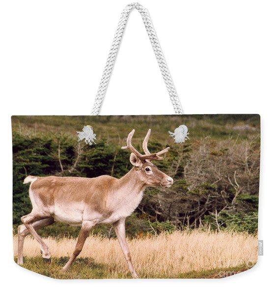 Caribou Weekender Tote Bag
