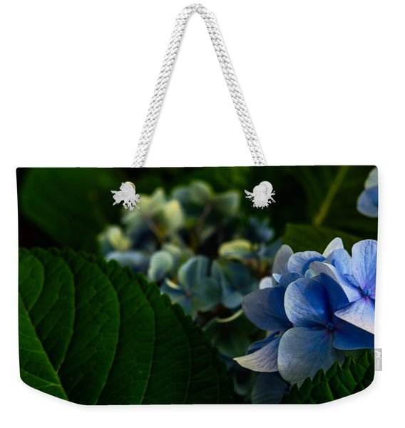 Carolina Blues Weekender Tote Bag