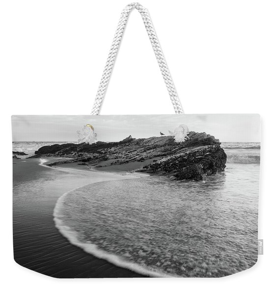 Weekender Tote Bag featuring the photograph Carpinteria Seagull by Tim Newton