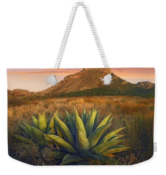 Casa Grande Butte With Agave Weekender Tote Bag