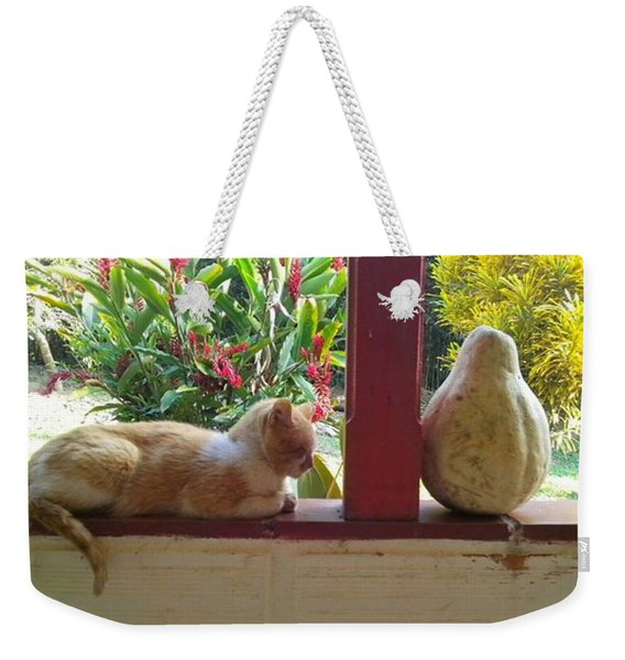 Cat And Pumpkin  From His Peaceful Weekender Tote Bag