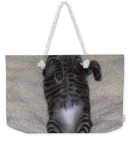 Cat In Repose Weekender Tote Bag
