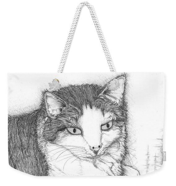 Domestic Cat Weekender Tote Bag