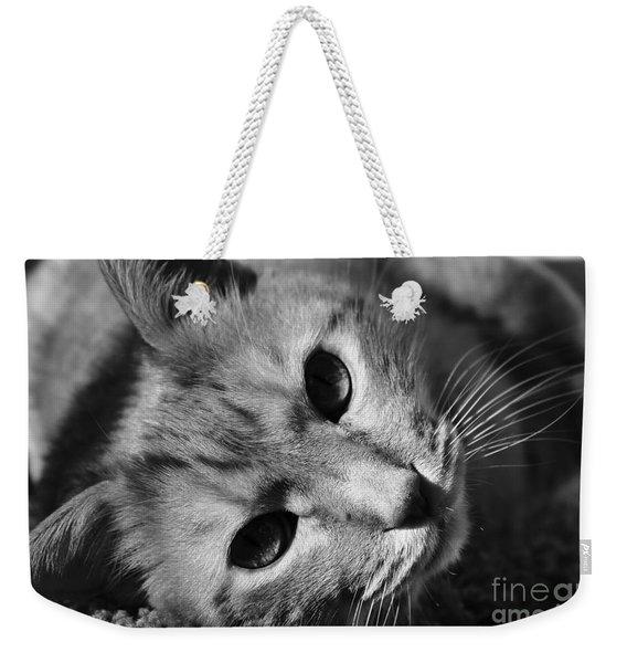 Cat Naps Weekender Tote Bag