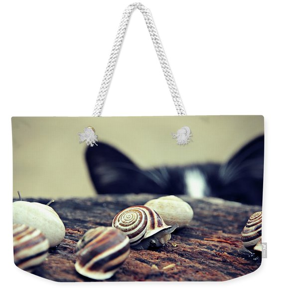 Cat Snails Weekender Tote Bag