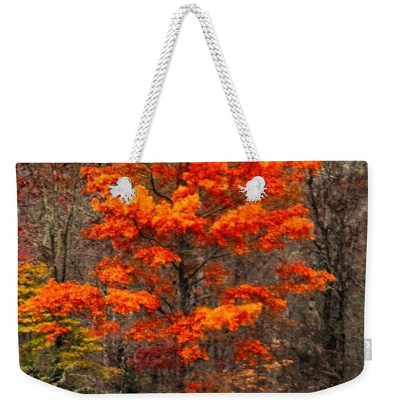 Cataloochee Color Weekender Tote Bag