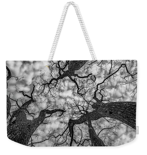Weekender Tote Bag featuring the photograph Catalpa And Altostrato Q by Scott Cordell