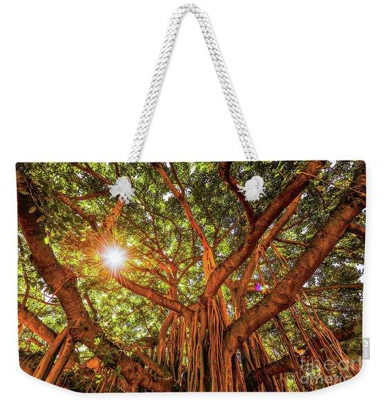 Catch A Sunbeam Under The Banyan Tree Weekender Tote Bag