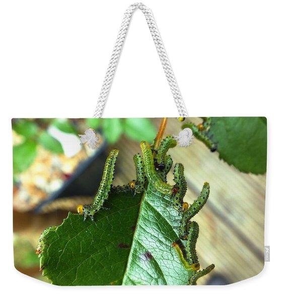 Caterpillars Devouring Rose Weekender Tote Bag