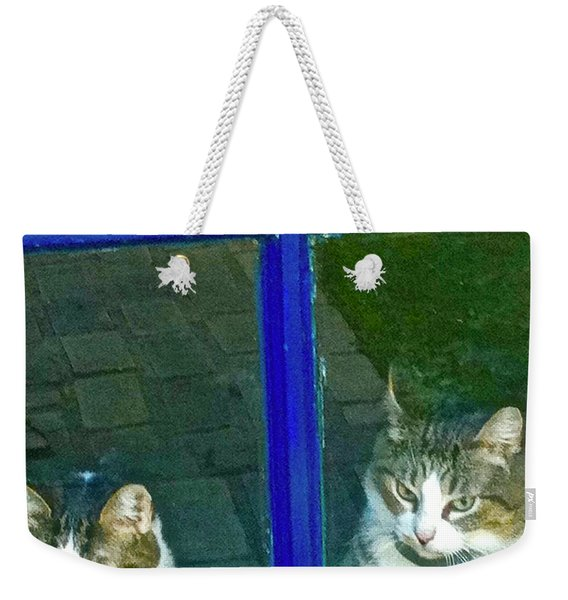 Cats On Baylor Street Weekender Tote Bag