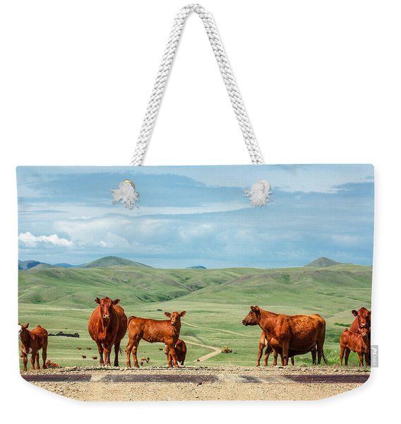 Cattle Guards Weekender Tote Bag