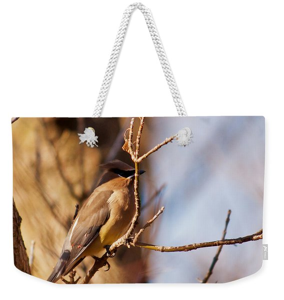 Cedar Waxwing In Autumn Weekender Tote Bag