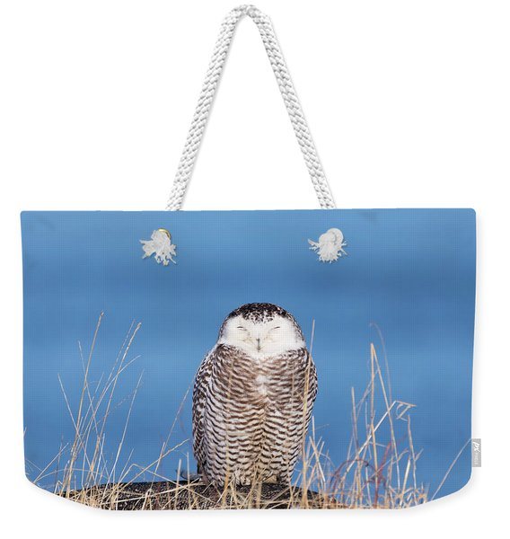 Centered Snowy Owl Weekender Tote Bag