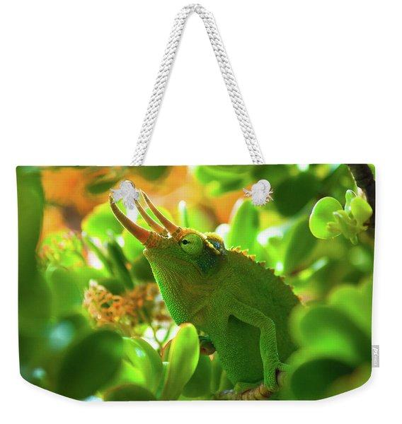 Chameleon King Weekender Tote Bag