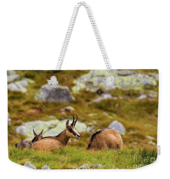 Chamois Weekender Tote Bag