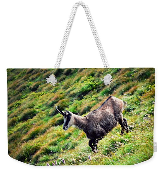 Chamois On A Sloping Hillside Weekender Tote Bag