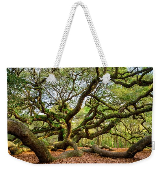 Charleston Sc Angel Oak Tree South Carolina Landscape Weekender Tote Bag