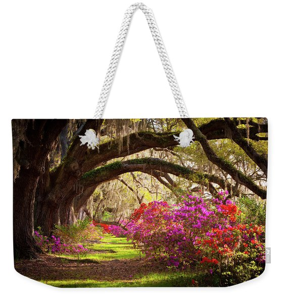 Charleston Sc Magnolia Plantation Gardens - Memory Lane Weekender Tote Bag