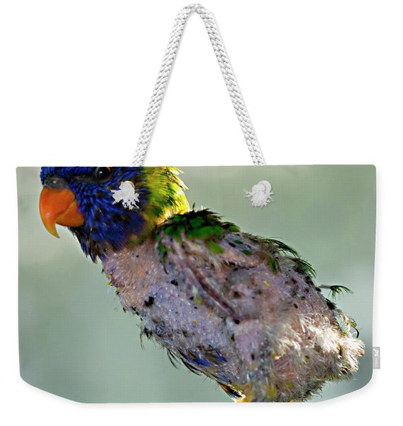 Charlie After A Night Out Weekender Tote Bag