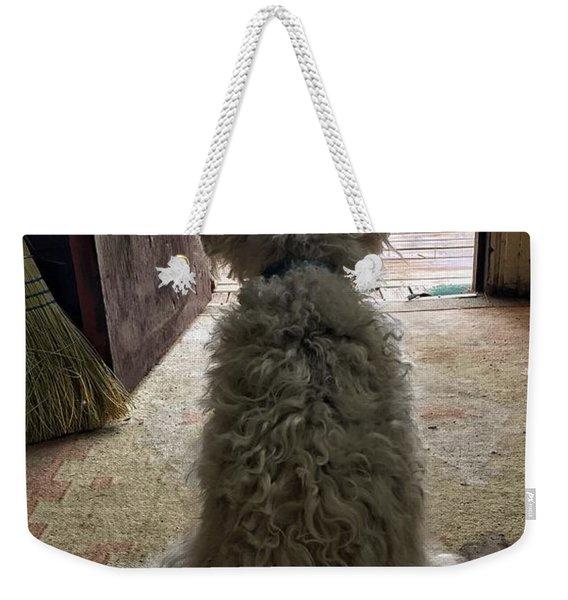 Charlie Dog Weekender Tote Bag