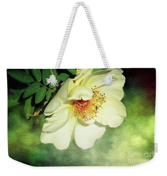Charming Weekender Tote Bag
