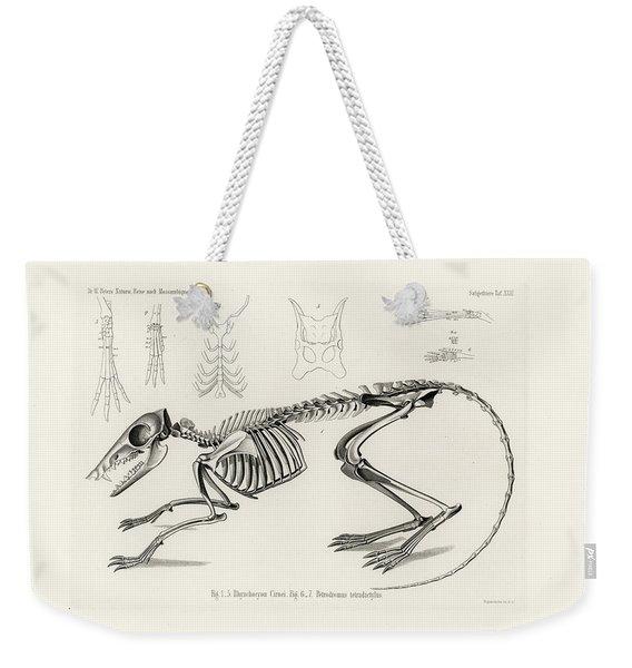 Checkered Elephant Shrew Skeleton Weekender Tote Bag