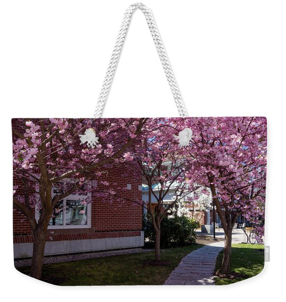 Weekender Tote Bag featuring the photograph Cherry Blossoms, Curtis Memorial Library, Brunswick, Me  -10011 by John Bald