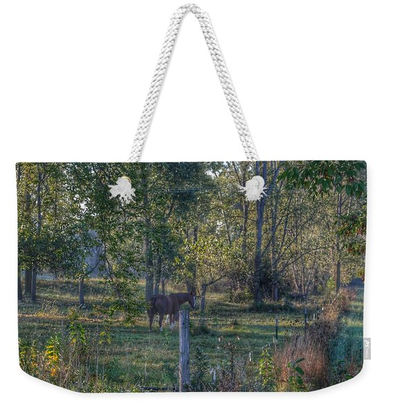 1009 - Chestnut Horse Among The Trees Weekender Tote Bag