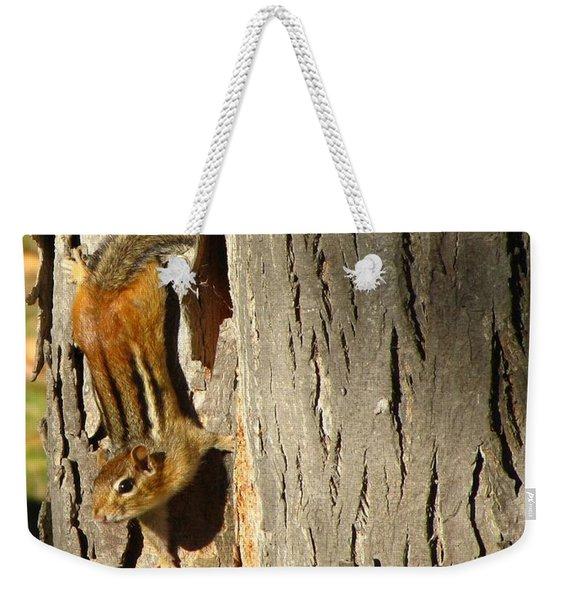 Chipmunk In Fall Weekender Tote Bag
