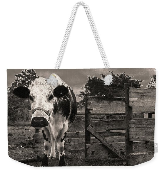 Chocolate Chip At The Stables Weekender Tote Bag