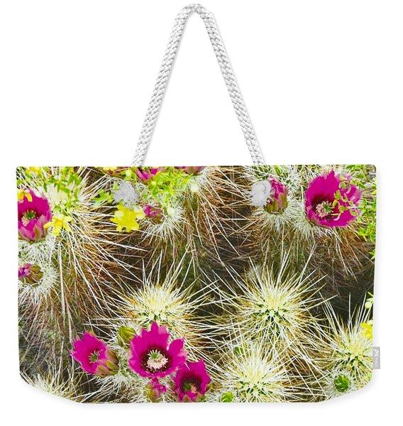 Cholla Cactus Blooms Weekender Tote Bag