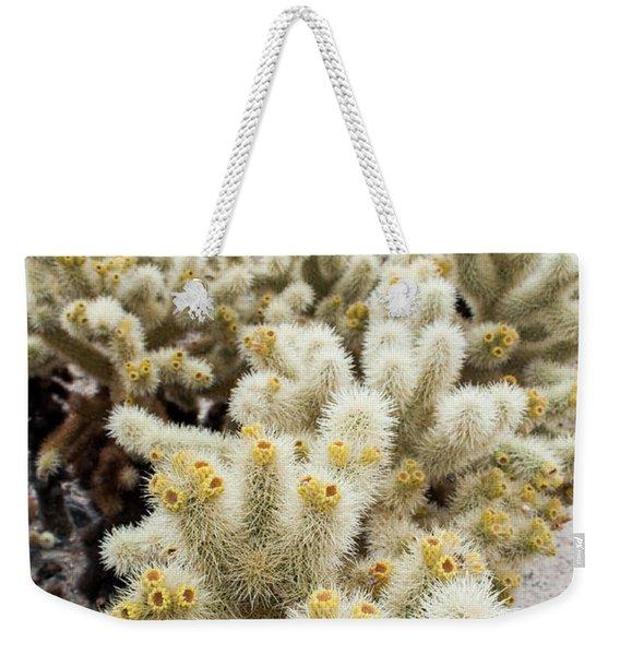 Cholla Cactus Garden Bunch Weekender Tote Bag