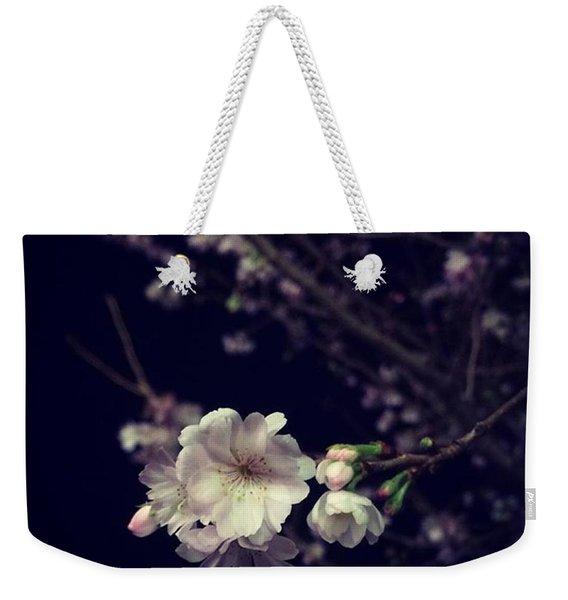 Christmas Cherry Bloom. 🎄🍒🌸 Weekender Tote Bag