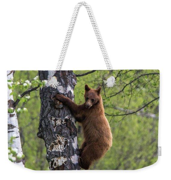 Cinnamon Climb Weekender Tote Bag