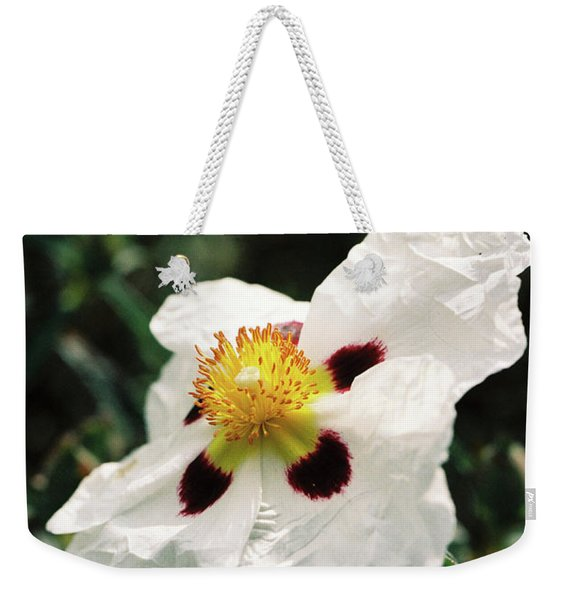 Cistus Rock Rose Side View Weekender Tote Bag