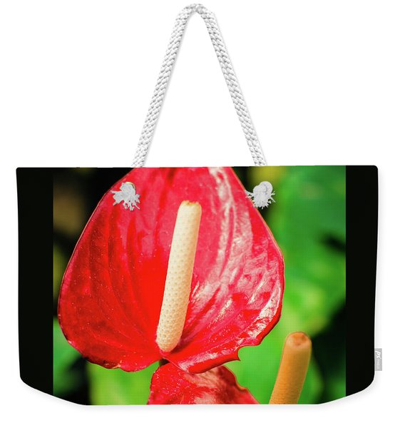 City Garden Flowers Weekender Tote Bag